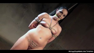 Clair Brooks caged cuffed bound gagged whipped vibed