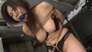 Japanese Shibari Bondage With Sex Toys