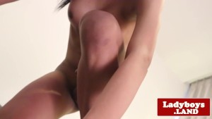 Uncut asian tranny spreads ass and jerks off